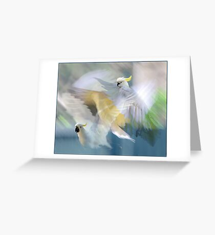 sulphur-crested cockatoos in flight Greeting Card