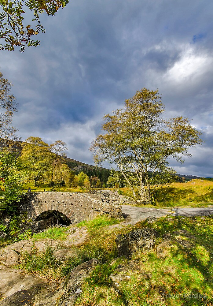 Birks Bridge Duddon Valley by Trevor Kersley