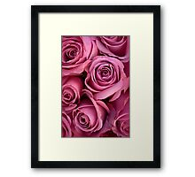 Pink In Concert Framed Print