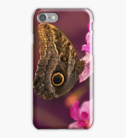 Blue Morpho butterly on pink flowers iPhone Case/Skin