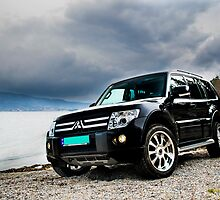 Pajero chilling at the beach by tj-photography