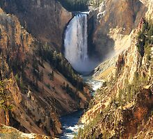 Yellowstone Canyon by Ann  Van Breemen