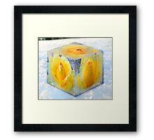 Frozen Yahtzee Framed Print