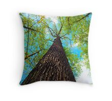 Climb the Highest Tree Throw Pillow