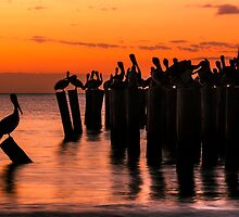 Sunset Orchestra by PeaceInArt