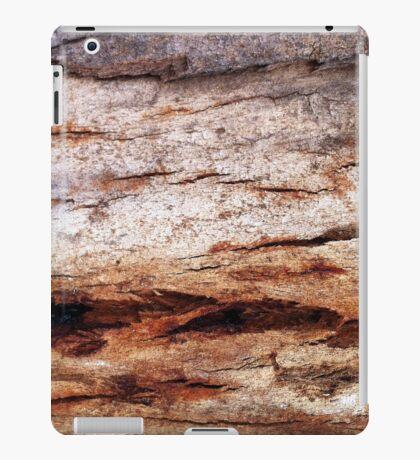 Shiver Me Timbers - No.2 iPad Case/Skin