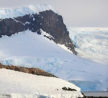Trinity Island & The Antarctic Peninsula by Carole-Anne