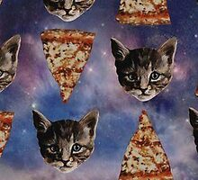 Cat & Pizza by sammyjackson