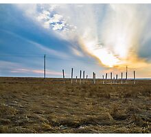 WoodHenge Photographic Print
