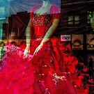 Magical Red Dress In The Window by Jane Neill-Hancock