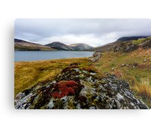 Glen Brittle Metal Print