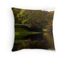 Loughrigg Tarn Throw Pillow