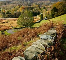 Elterwater Views by Stephen Smith