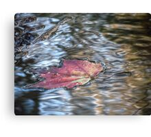 Leaf on Water 12 Canvas Print