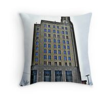 Beautiful Old Abandoned Office Building Throw Pillow