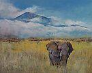 Elephant Savanna by Michael Creese