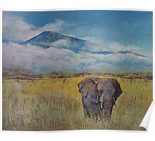 Elephant Savanna Poster