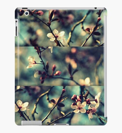 Vintage Blossoms - Triptych iPad Case/Skin