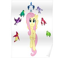 Fluttershy's Destiny Poster