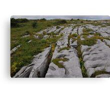 The Burren County Clare Ireland Canvas Print