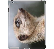 Searching the Skies iPad Case/Skin