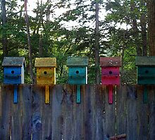 Birdhouses Five by Wayne King