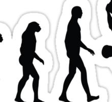 Evolution Climbing Sticker