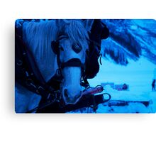 Cavlary on the Lake Canvas Print