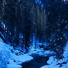 Johnston Canyon, Walk by Beau Williams