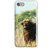 Water Buffalo iPhone Case/Skin