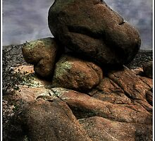 Five Stones in the Dells by Wayne King
