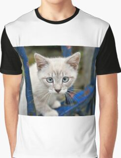Kitten with blue eyes on the street Graphic T-Shirt