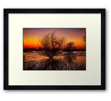 Wetlands Dawn Framed Print