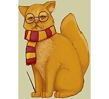 Gryffindor Cat Photographic Print