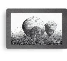 Boulders in the Grass Canvas Print