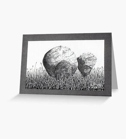Boulders in the Grass Greeting Card