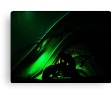 Cryptic Fantasy Canvas Print