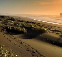 Footsteps upon the Oregon Gold Coast by Bob Moore