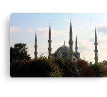 the blue mosque. Canvas Print