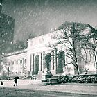 Winter Night - 5th Avenue - New York City by Vivienne Gucwa