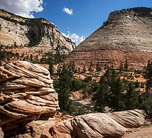 Checkerboard Mesa, Zion by MarissaAnn