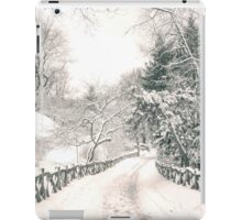 Central Park Winter Path iPad Case/Skin
