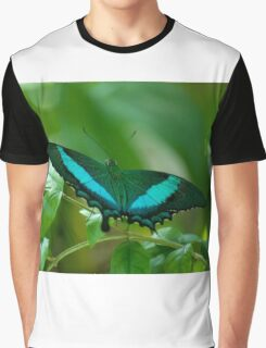 Imperial Butterfly Graphic T-Shirt