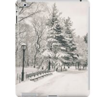 Central Park Winter Trees iPad Case/Skin