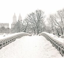 Winter View - Bow Bridge - Central Park - New York City by Vivienne Gucwa