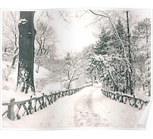 Snowy Path -  Central Park - New York City Poster