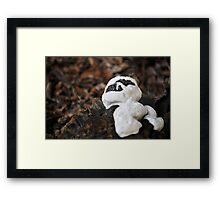 Casper the fungus...for Manon!!! Framed Print