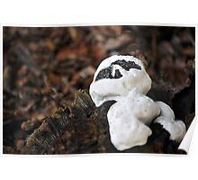 Casper the fungus...for Manon!!! Poster