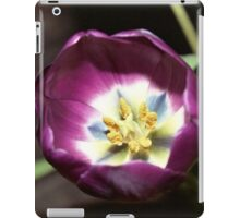 Brilliance iPad Case/Skin