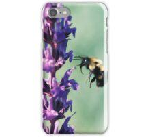 Buzzing Around 2 iPhone Case/Skin